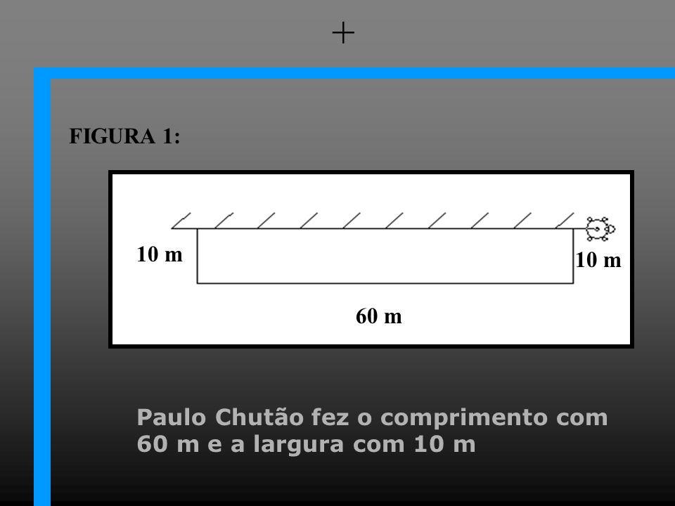 Paulo Chutão fez o comprimento com 60 m e a largura com 10 m + 60 m 10 m FIGURA 1: