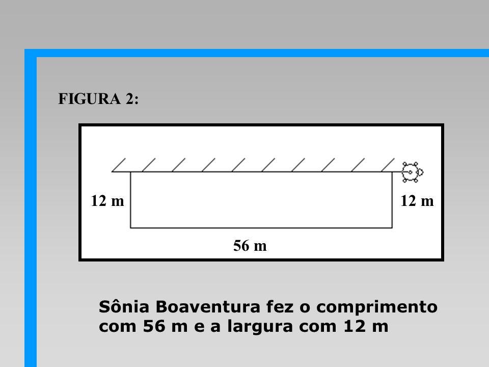 Sônia Boaventura fez o comprimento com 56 m e a largura com 12 m 56 m 12 m FIGURA 2: