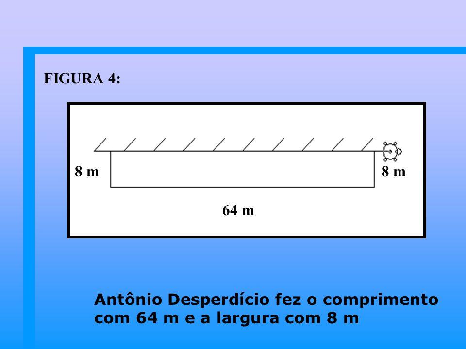 Antônio Desperdício fez o comprimento com 64 m e a largura com 8 m 64 m 8 m FIGURA 4: