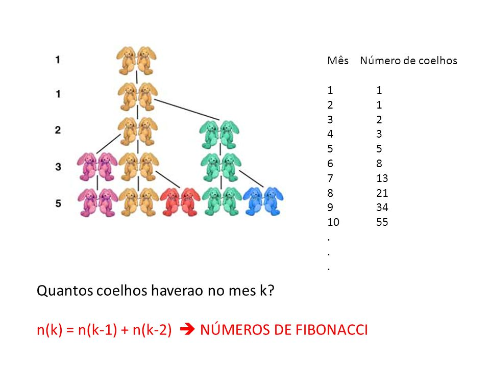 Quantos coelhos haverao no mes k? n(k) = n(k-1) + n(k-2) NÚMEROS DE FIBONACCI Mês Número de coelhos1 21 32 435 68 713 821 934 1055.