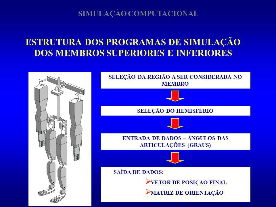 ESTRUTURA DOS PROGRAMAS DE SIMULAÇÃO DOS MEMBROS SUPERIORES E INFERIORES SIMULAÇÃO COMPUTACIONAL SELEÇÃO DA REGIÃO A SER CONSIDERADA NO MEMBRO SELEÇÃO