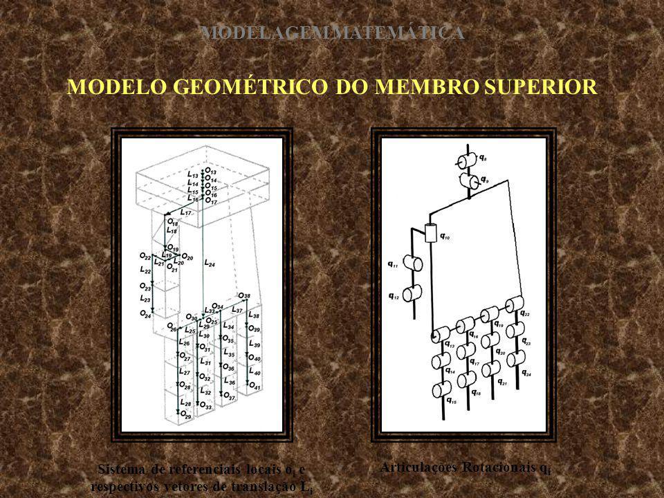 MODELO GEOMÉTRICO DO MEMBRO SUPERIOR Sistema de referenciais locais o i e respectivos vetores de translação L i Articulações Rotacionais q i MODELAGEM
