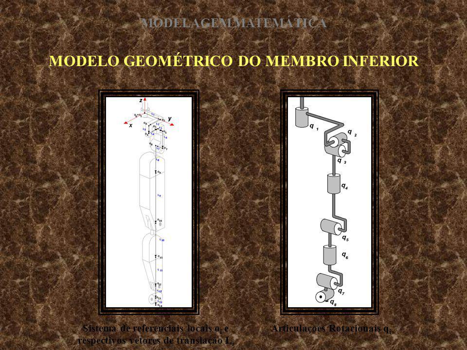 MODELO GEOMÉTRICO DO MEMBRO INFERIOR Sistema de referenciais locais o i e respectivos vetores de translação L i Articulações Rotacionais q i MODELAGEM