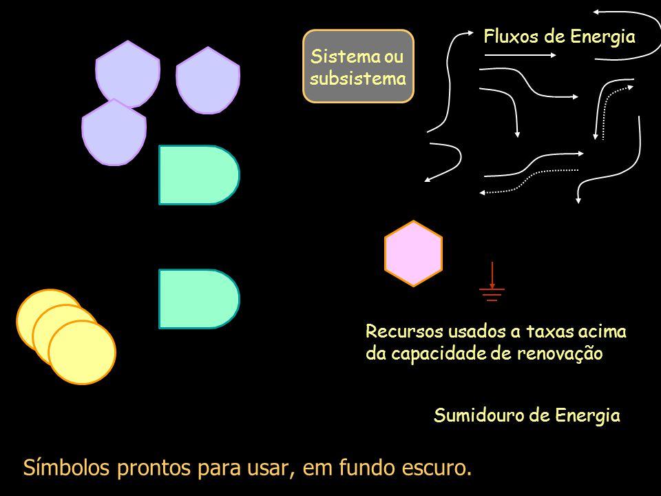 Sumidouro de Energia Rede de fluxos e componentes da Biosfera.