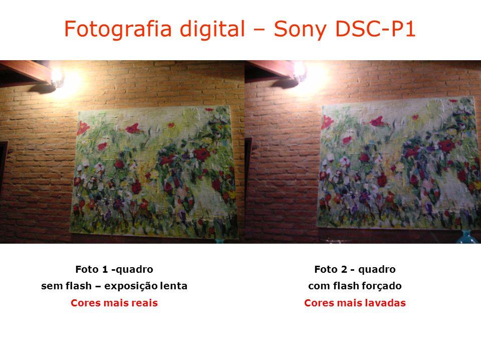 Fotografia digital – Sony DSC-P1 Foto 1 -quadro sem flash – exposição lenta Cores mais reais Foto 2 - quadro com flash forçado Cores mais lavadas