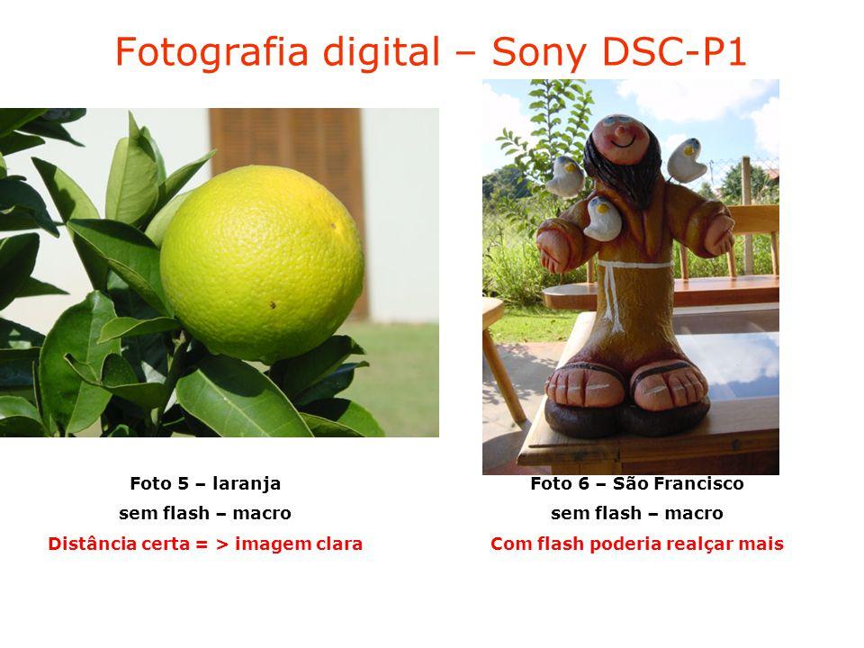Fotografia digital – Sony DSC-P1 Foto 5 – laranja sem flash – macro Distância certa = > imagem clara Foto 6 – São Francisco sem flash – macro Com flash poderia realçar mais