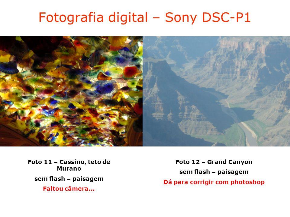 Fotografia digital – Sony DSC-P1 Foto 11 – Cassino, teto de Murano sem flash – paisagem Faltou câmera...
