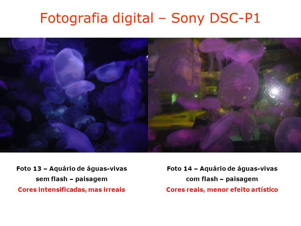 Fotografia digital – Sony DSC-P1 Foto 13 – Aquário de águas-vivas sem flash – paisagem Cores intensificadas, mas irreais Foto 14 – Aquário de águas-vivas com flash – paisagem Cores reais, menor efeito artístico
