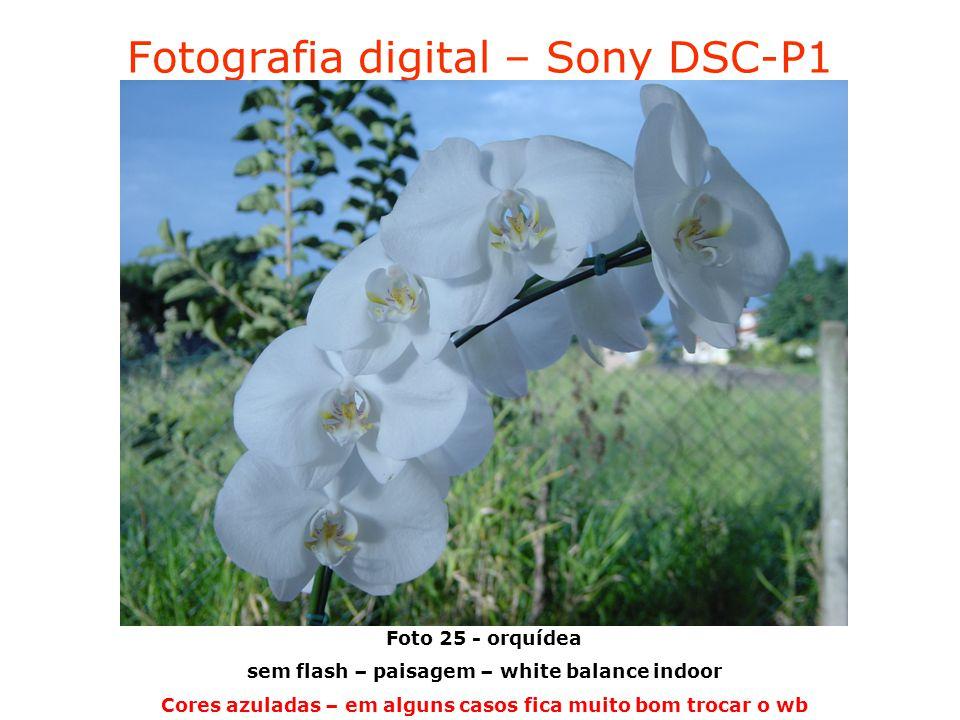 Fotografia digital – Sony DSC-P1 Foto 25 - orquídea sem flash – paisagem – white balance indoor Cores azuladas – em alguns casos fica muito bom trocar o wb