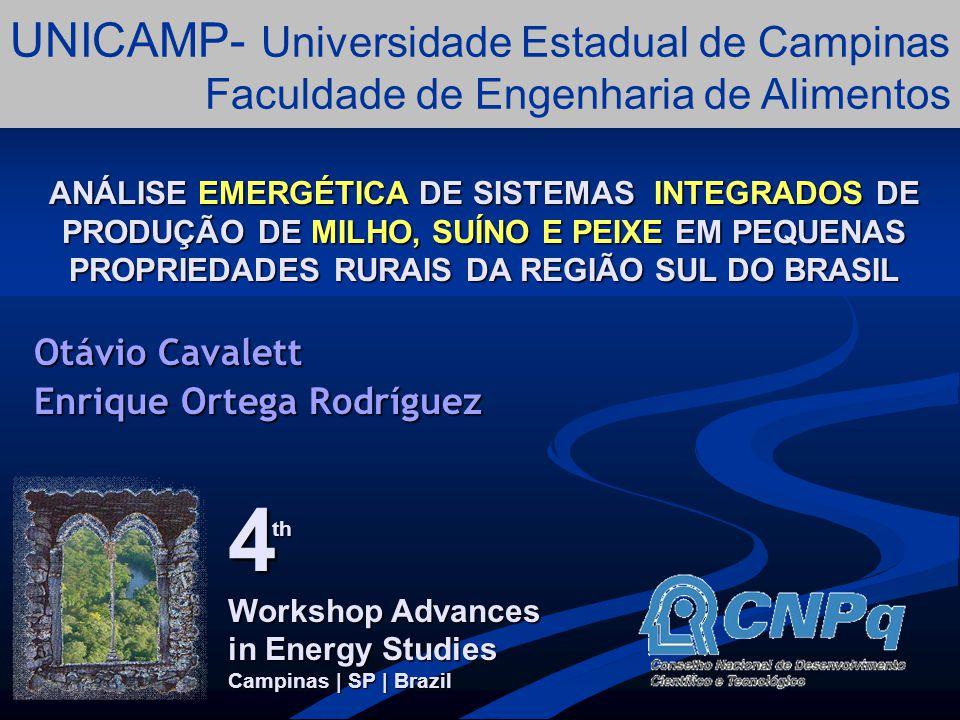 introdução A região Oeste do estado de Santa Catarina ocupa uma área de 25,3 mil Km 2.