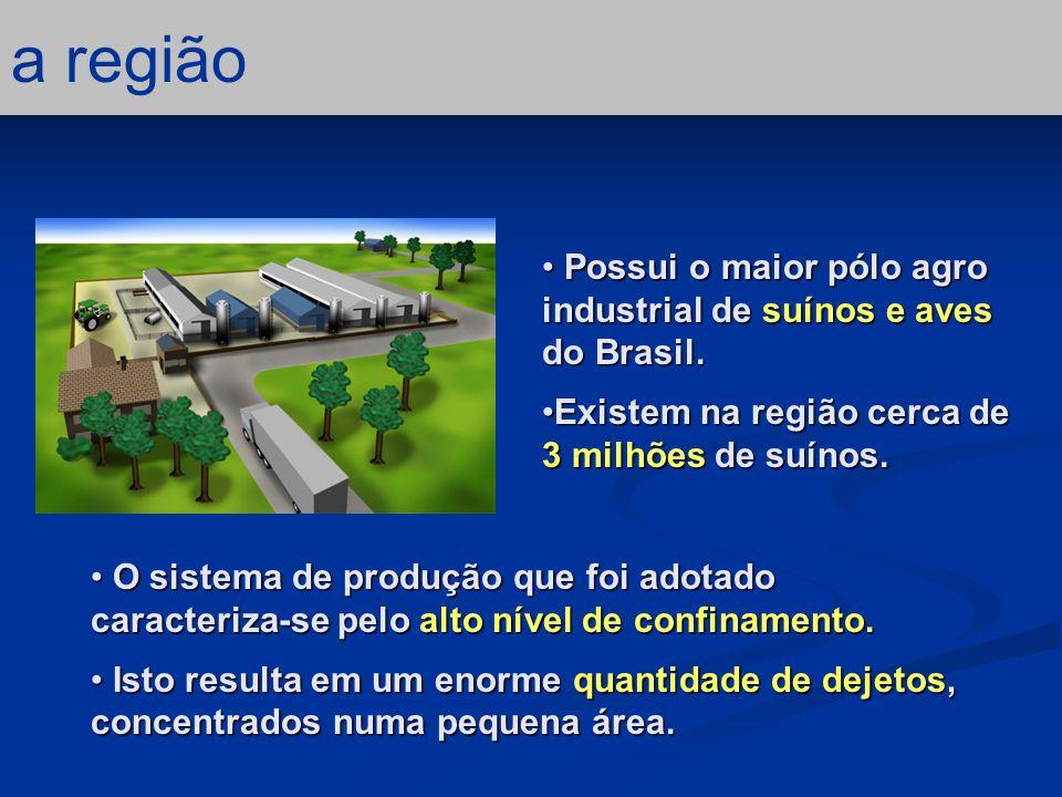 conclusão – 3/5 as agroindústrias As indústrias de processamento de carne são responsáveis pela intensificação na produção.