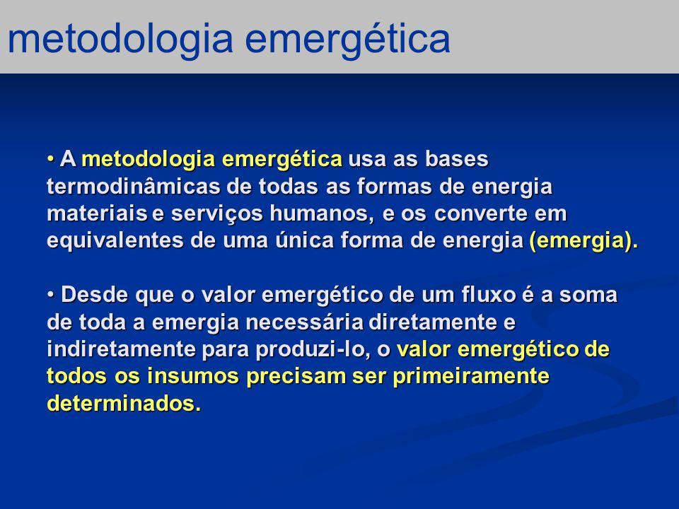 diagrama sistêmico O primeiro passo na analise emergética é fazer o diagrama sistêmico.