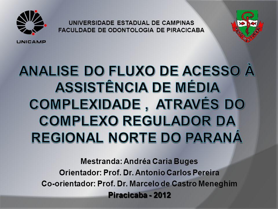 Mestranda: Andréa Caria Buges Orientador: Prof. Dr. Antonio Carlos Pereira Co-orientador: Prof. Dr. Marcelo de Castro Meneghim Piracicaba - 2012 UNIVE