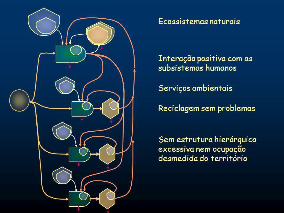 Interação positiva com os subsistemas humanos Ecossistemas naturais Sem estrutura hierárquica excessiva nem ocupação desmedida do território Reciclagem sem problemas Serviços ambientais