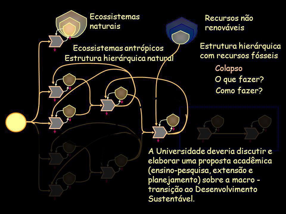 O que fazer? Ecossistemas naturais Ecossistemas antrópicos Recursos não renováveis A Universidade deveria discutir e elaborar uma proposta acadêmica (