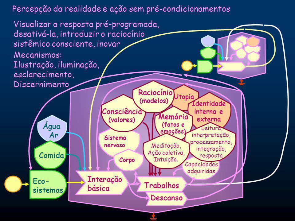 Utopia Identidade interna e externa Percepção da realidade e ação sem pré-condicionamentos Água Ar Eco- sistemas Comida Interação básica Sistema nervoso Corpo Trabalhos Capacidades adquiridas Descanso Consciência (valores) Raciocínio (modelos) Memória (fatos e emoções) Visualizar a resposta pré-programada, desativá-la, introduzir o raciocínio sistêmico consciente, inovar Leitura, interpretação, processamento, integração, resposta Meditação, Ação coletiva, Intuição.