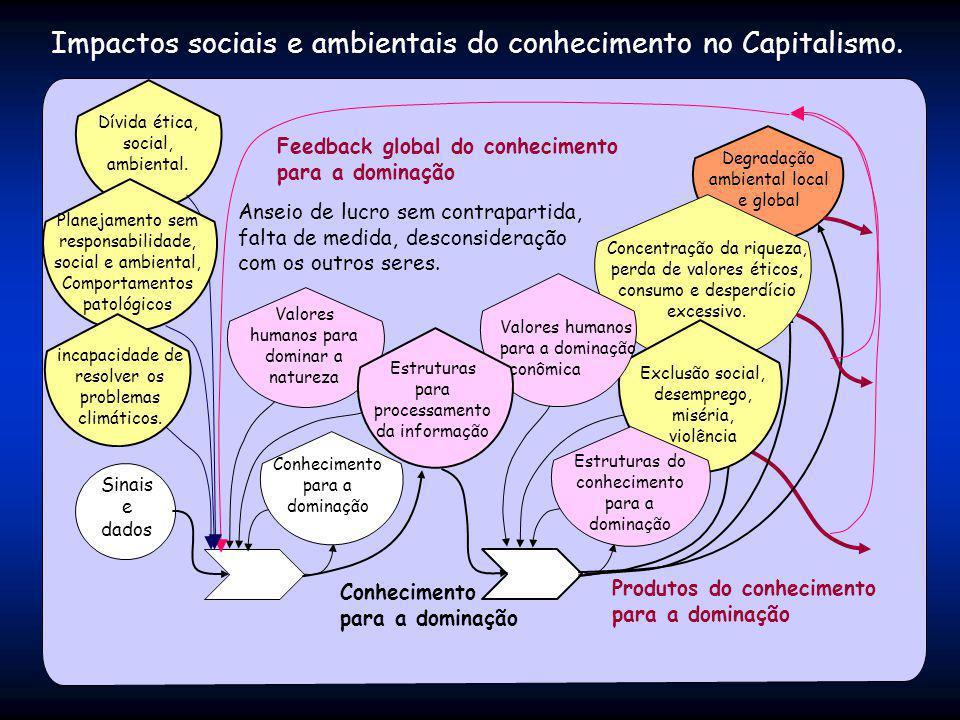 Impactos sociais e ambientais do conhecimento no Capitalismo. Produtos do conhecimento para a dominação Degradação ambiental local e global Sinais e d