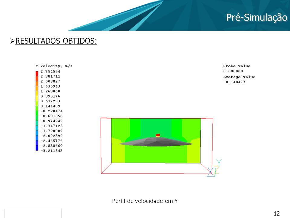 12 Pré-Simulação RESULTADOS OBTIDOS: Perfil de velocidade em Y