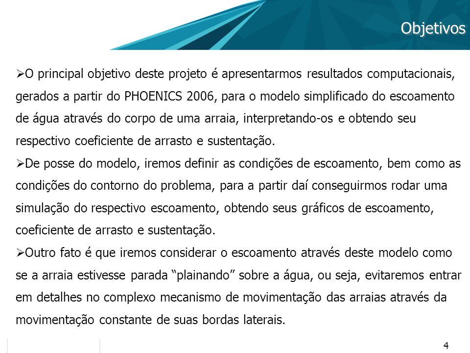 4 Objetivos O principal objetivo deste projeto é apresentarmos resultados computacionais, gerados a partir do PHOENICS 2006, para o modelo simplificad