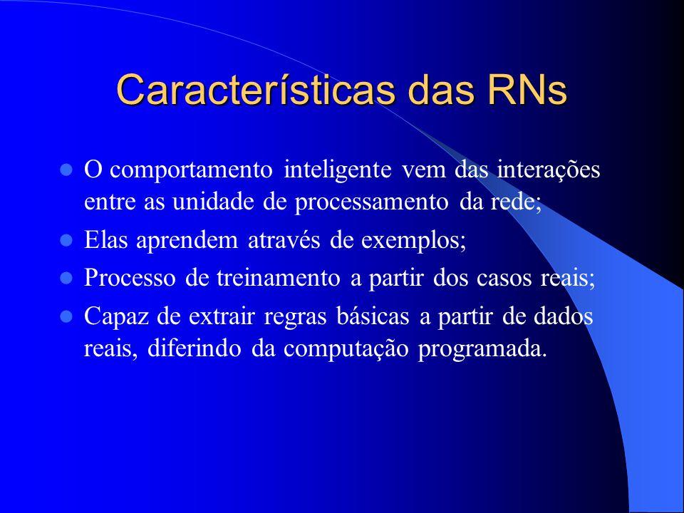 Características das RNs O comportamento inteligente vem das interações entre as unidade de processamento da rede; Elas aprendem através de exemplos; Processo de treinamento a partir dos casos reais; Capaz de extrair regras básicas a partir de dados reais, diferindo da computação programada.