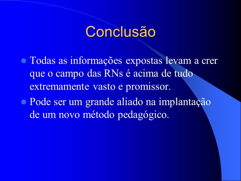 Conclusão Todas as informações expostas levam a crer que o campo das RNs é acima de tudo extremamente vasto e promissor.