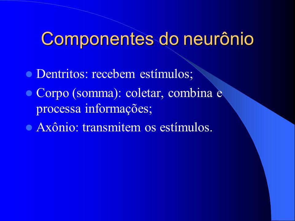 Componentes do neurônio Dentritos: recebem estímulos; Corpo (somma): coletar, combina e processa informações; Axônio: transmitem os estímulos.