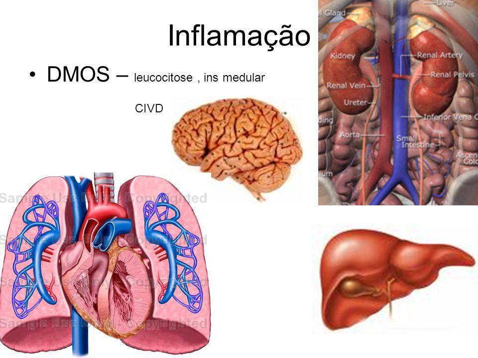 Inflamação DMOS – leucocitose, ins medular CIVD