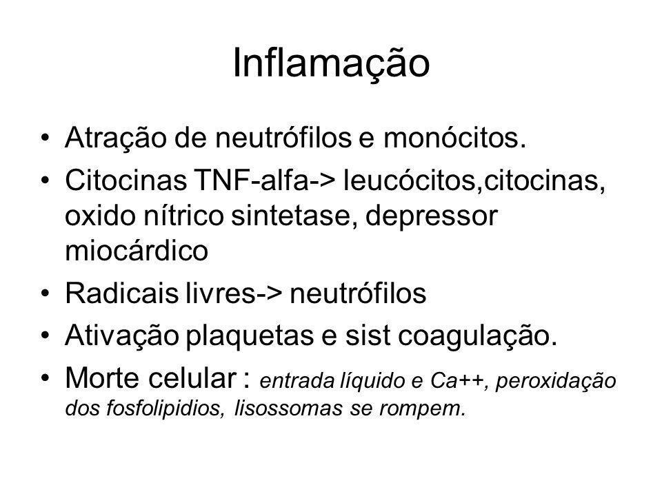 Inflamação Atração de neutrófilos e monócitos.