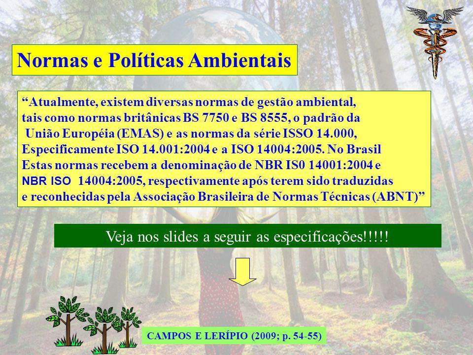 Normas e Políticas Ambientais NBR 10004:2004 Classificação de Resíduos Sólidos NBR 12235:1992 Armazenamento de Resíduos Sólidos Perigosos NBR 19011:20