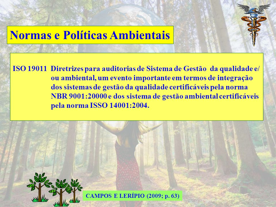 Normas e Políticas Ambientais BS 7750 Especificações para Sistemas de Gestão Ambiental – 1992 Não estabelece exigências absolutas para o desempenho am