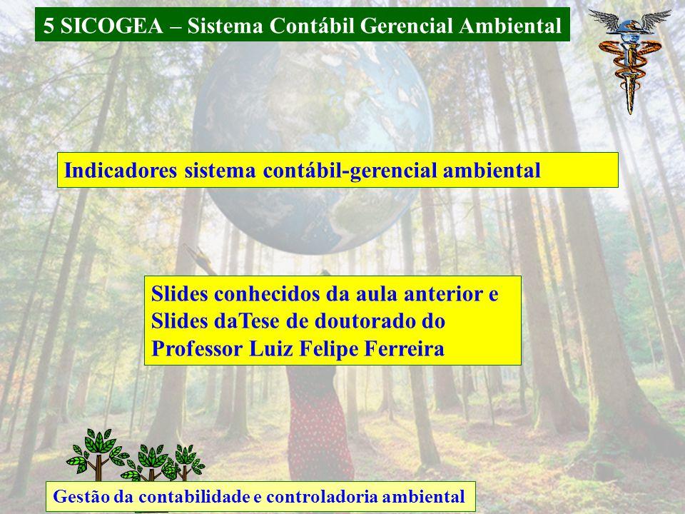 5 SICOGEA – Sistema Contábil Gerencial Ambiental Gestão da contabilidade e controladoria ambiental Indicadores sistema contábil-gerencial ambiental Slides conhecidos da aula anterior e Slides daTese de doutorado do Professor Luiz Felipe Ferreira