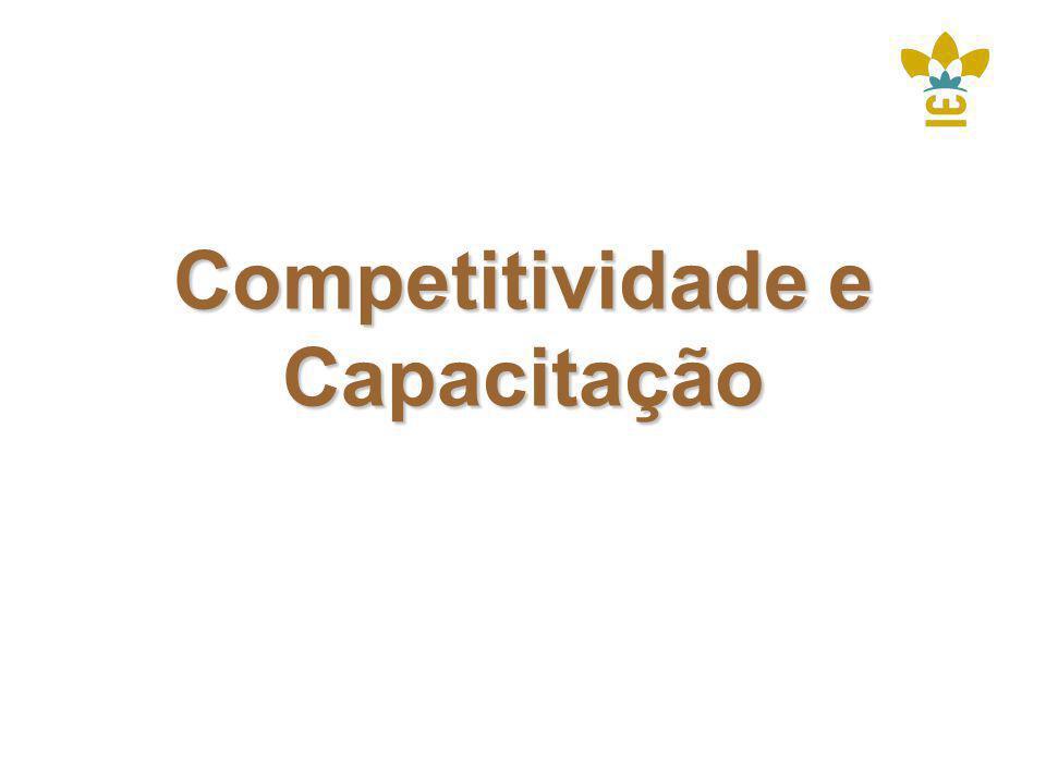Competitividade e Capacitação