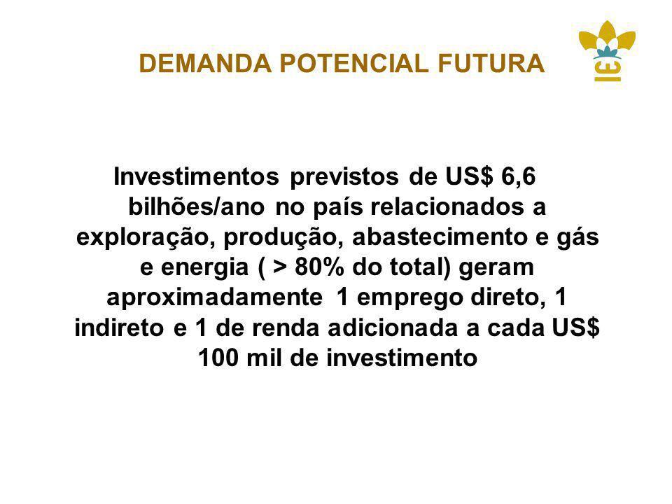DEMANDA POTENCIAL FUTURA Investimentos previstos de US$ 6,6 bilhões/ano no país relacionados a exploração, produção, abastecimento e gás e energia ( > 80% do total) geram aproximadamente 1 emprego direto, 1 indireto e 1 de renda adicionada a cada US$ 100 mil de investimento