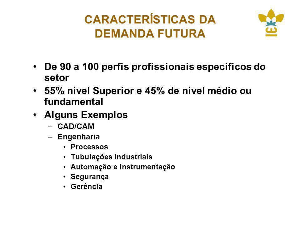 CARACTERÍSTICAS DA DEMANDA FUTURA De 90 a 100 perfis profissionais específicos do setor 55% nível Superior e 45% de nível médio ou fundamental Alguns Exemplos –CAD/CAM –Engenharia Processos Tubulações Industriais Automação e instrumentação Segurança Gerência