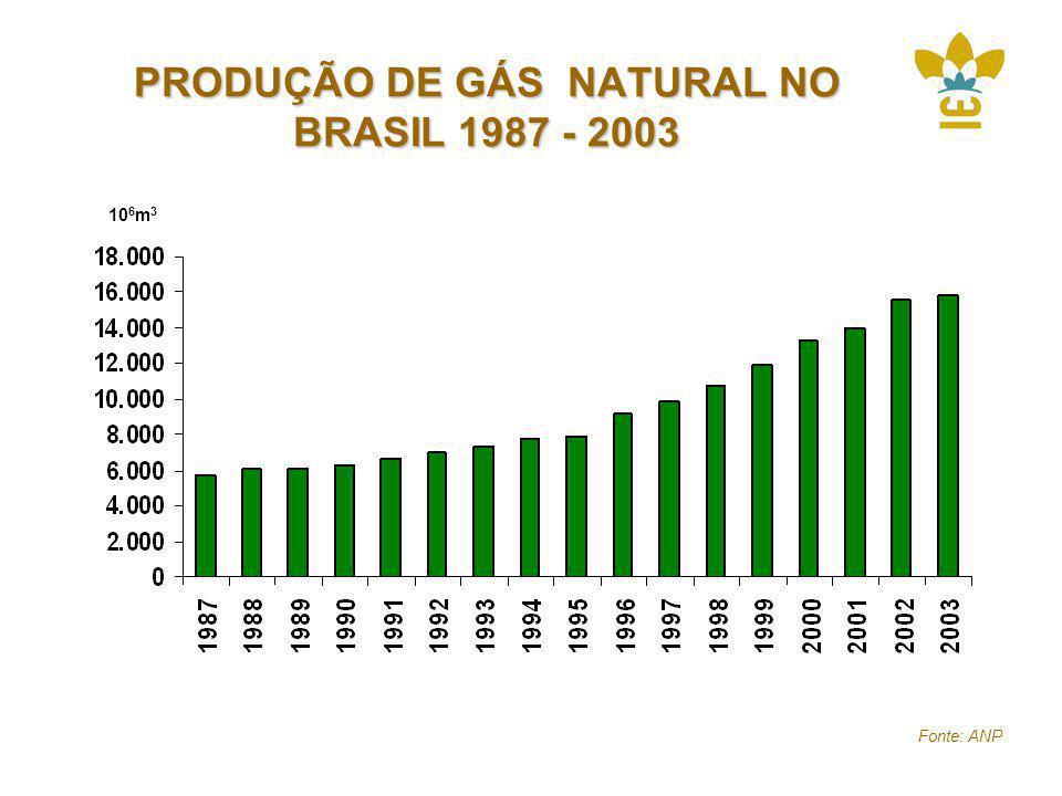 PRODUÇÃO DE GÁS NATURAL NO BRASIL 1987 - 2003 10 6 m 3 Fonte: ANP