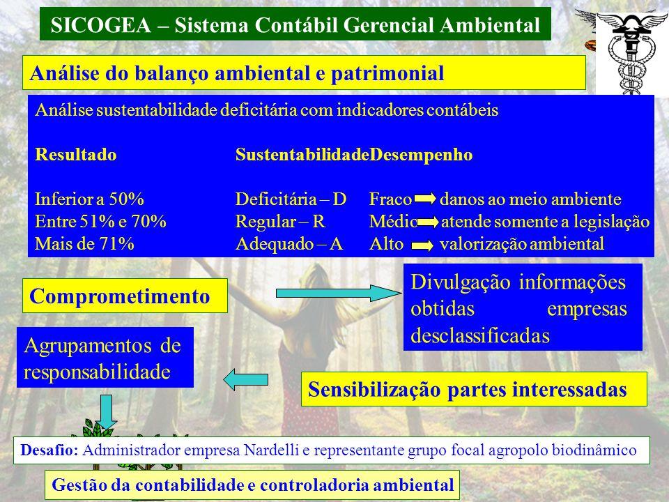 SICOGEA – Sistema Contábil Gerencial Ambiental Análise do balanço ambiental e patrimonial Gestão da contabilidade e controladoria ambiental Análise su