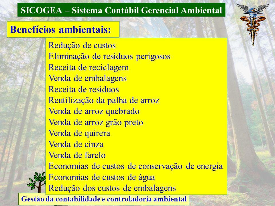 SICOGEA – Sistema Contábil Gerencial Ambiental Gestão da contabilidade e controladoria ambiental Benefícios ambientais: Redução de custos Eliminação d