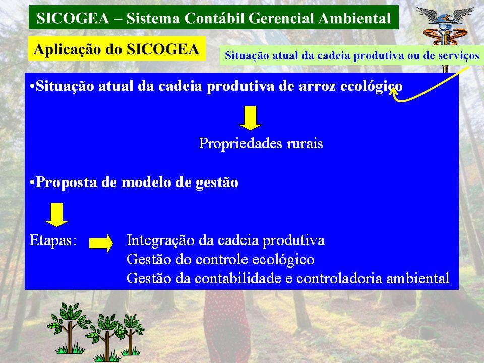 SICOGEA – Sistema Contábil Gerencial Ambiental Aplicação do SICOGEA Situação atual da cadeia produtiva ou de serviços