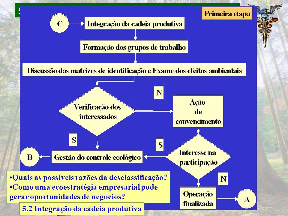 5 SICOGEA – Sistema Contábil Gerencial Ambiental Quais as possíveis razões da desclassificação? Como uma ecoestratégia empresarial pode gerar oportuni