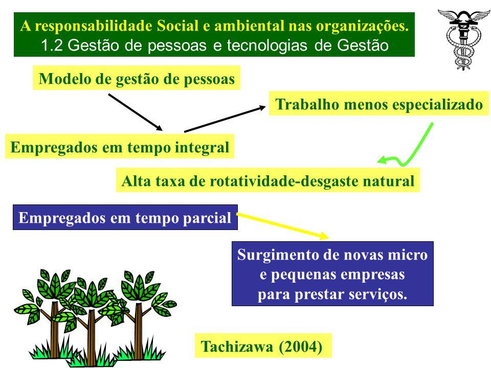 Imagem, liderança e tradição no mercado não são suficientes Tachizawa (2004) Profissionais – Público interno Desafios, Oportunidade de desenvolvimento