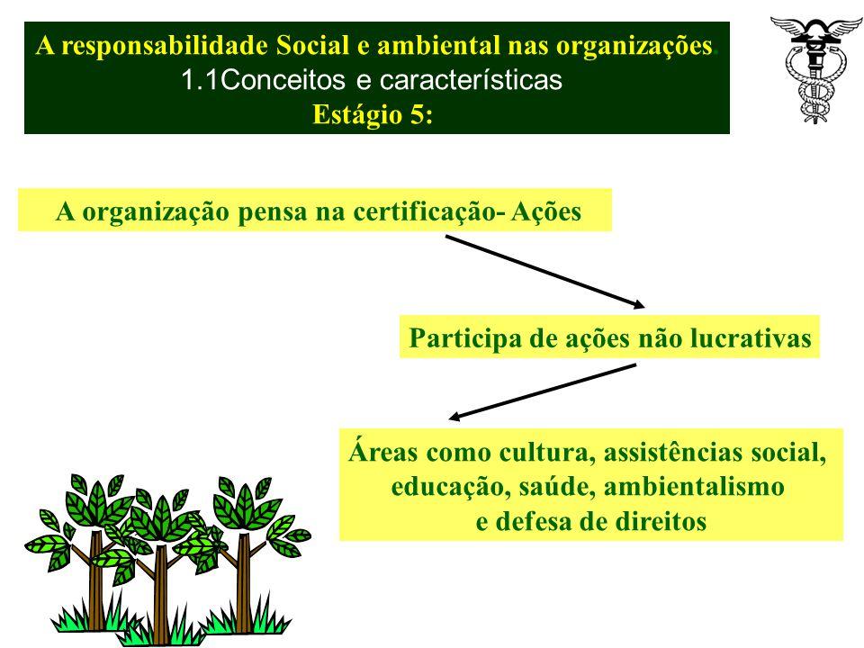 A organização sistematiza os impactos sociais e ambientais- Análise de sustentabilidade Exerce liderança de interesse da Comunidade de diversas formas