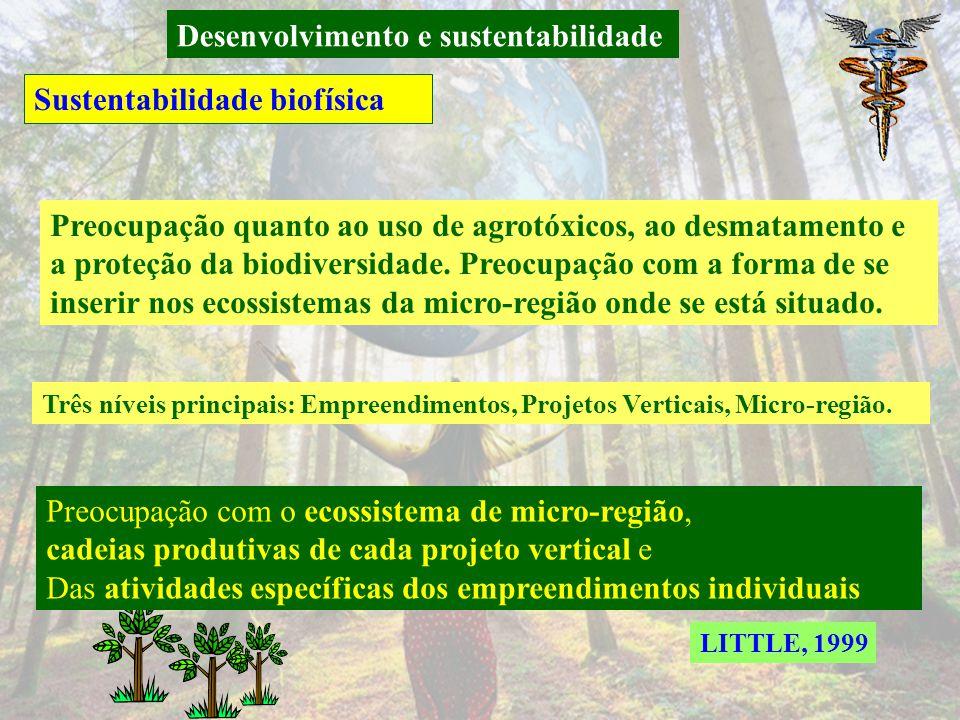 Desenvolvimento e sustentabilidade Teorias e Conceitos de desenvolvimento sustentável PFITSCHER, 2001 Conceito multidimensional do DS [...] para garan