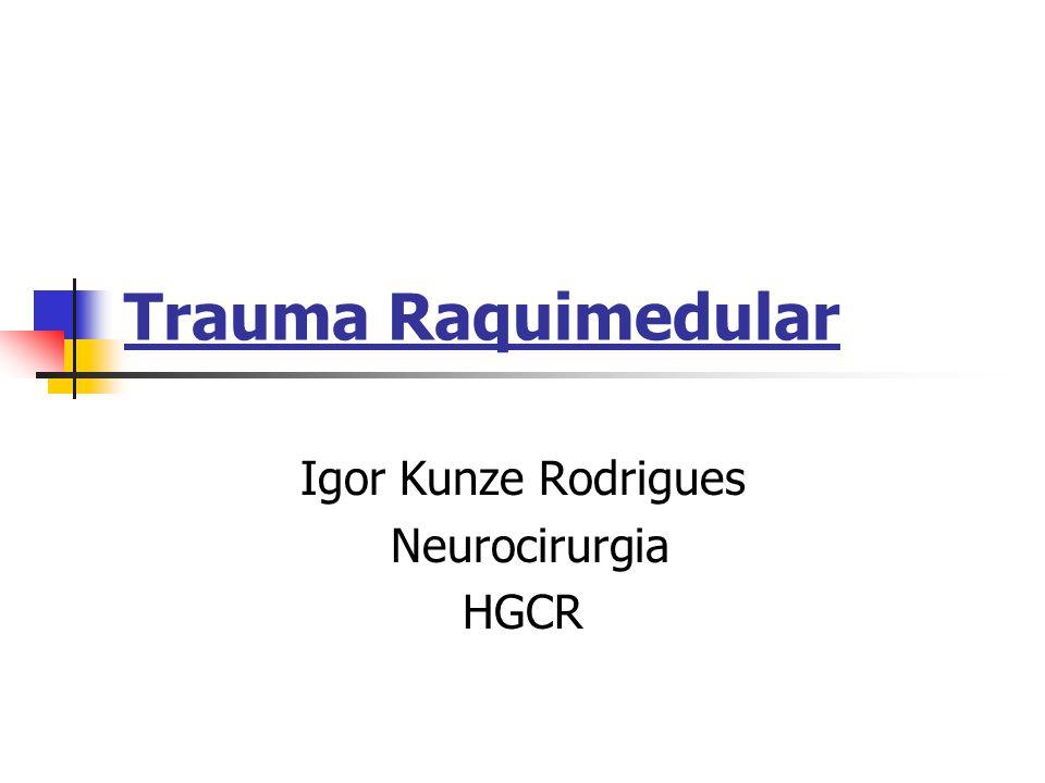 Trauma Raquimedular Igor Kunze Rodrigues Neurocirurgia HGCR