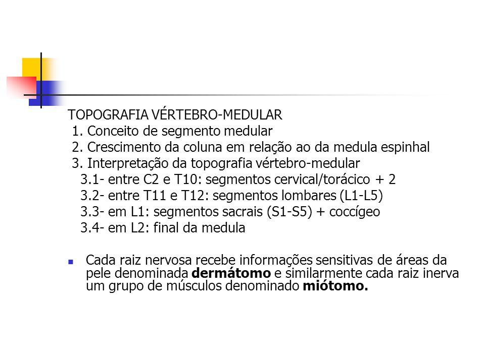 TOPOGRAFIA VÉRTEBRO-MEDULAR 1. Conceito de segmento medular 2. Crescimento da coluna em relação ao da medula espinhal 3. Interpretação da topografia v