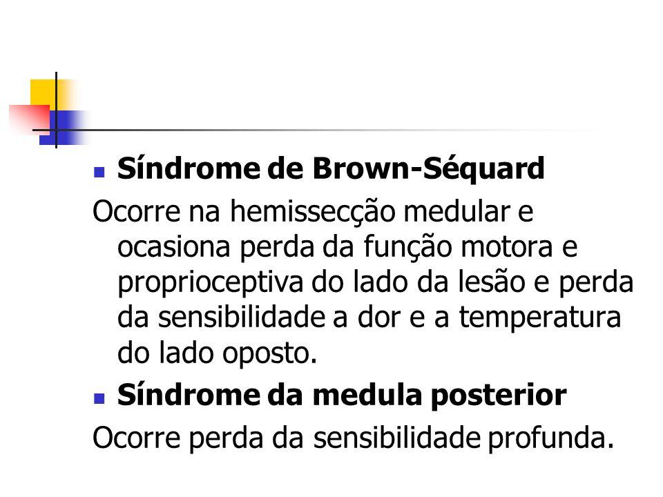 Síndrome de Brown-Séquard Ocorre na hemissecção medular e ocasiona perda da função motora e proprioceptiva do lado da lesão e perda da sensibilidade a
