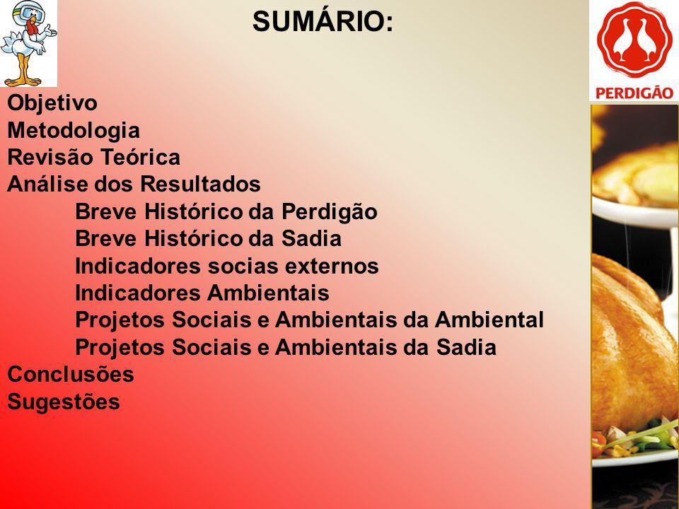 ANÁLISE DOS RESULTADOS: Breve histórico Sadia A companhia fecha a década de 80 exportando para 40 países e posiciona-se entre os maiores exportadores brasileiros.