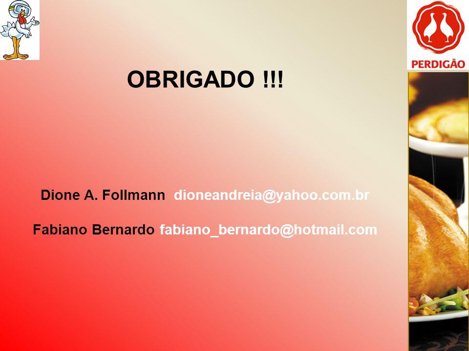 OBRIGADO !!! Dione A. Follmann dioneandreia@yahoo.com.br Fabiano Bernardo fabiano_bernardo@hotmail.com