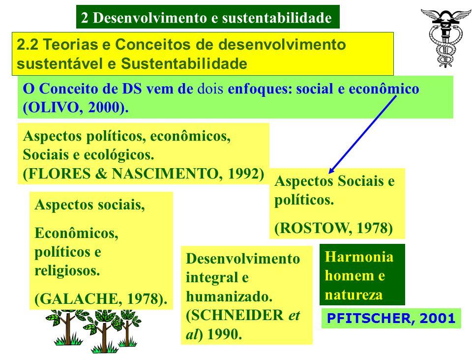 2 Desenvolvimento e sustentabilidade PFITSCHER, 2001 A mobilização da opinião pública internacional e a pressão Política exercida aos governos no plan