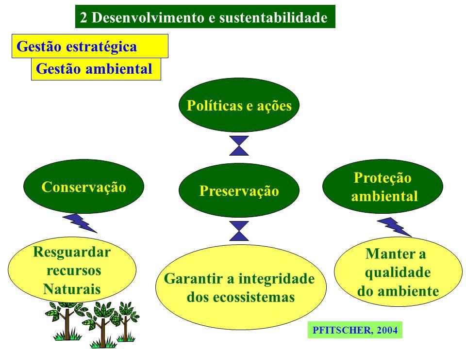 EsforçoSatisfação Simultâneoclientes Vieira(1999, p.298) Vetores responsabilidade social Gestão social Cooperação Valorização Qualidade no trabalho Informação Rentabilidade Sinergia Recursos Gestão estratégica PFITSCHER, 2004 2 Desenvolvimento e sustentabilidade
