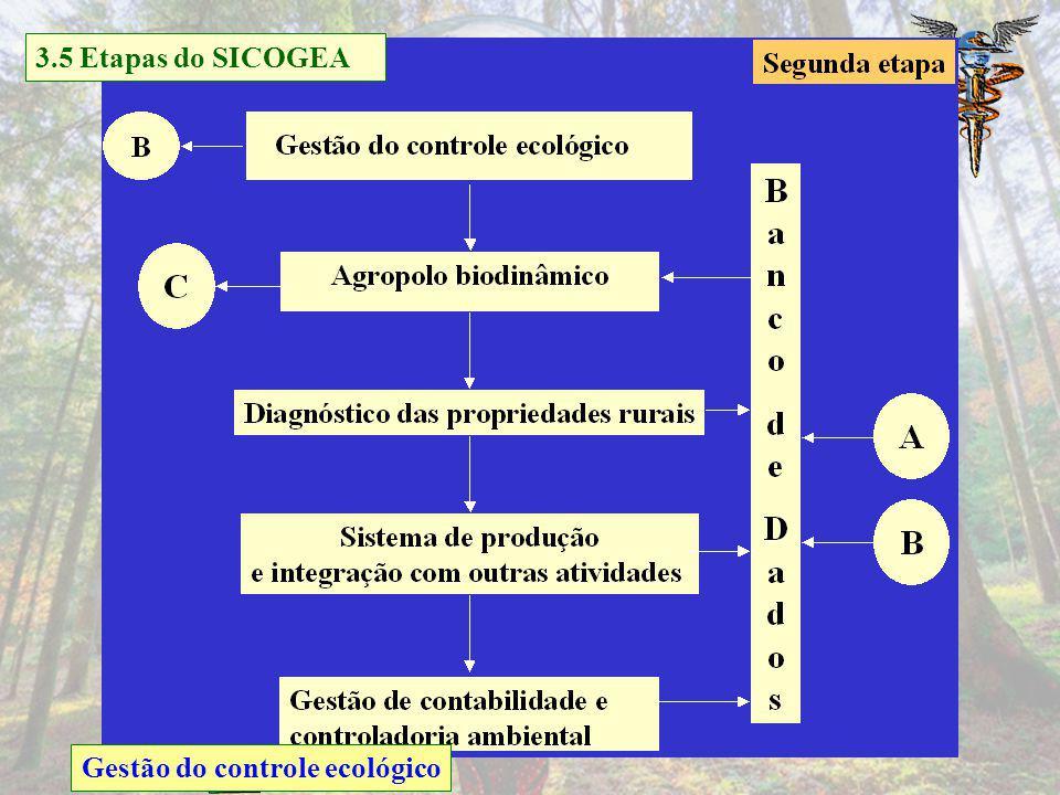 Discussão sobre o cultivo ecológico e avaliação dos efeitos ambientais Atitudes e participação dos envolvidos na proteção ambiental 3.5 Etapas do SICO